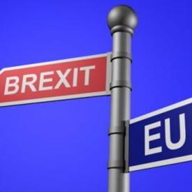brexit-275