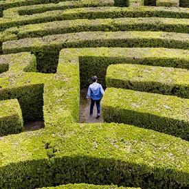 maze blog post block