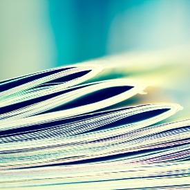 publications 275 275