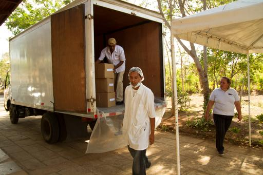 Farmers loading hibiscus into white van