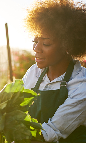 Woman in apron looking closely at a plant in garden