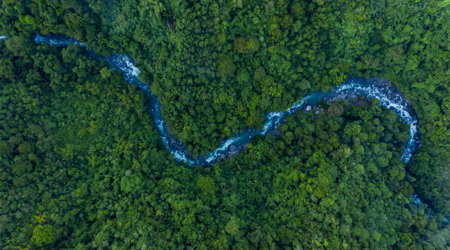 Ariel view of a rainforest with a river snaking through the middle