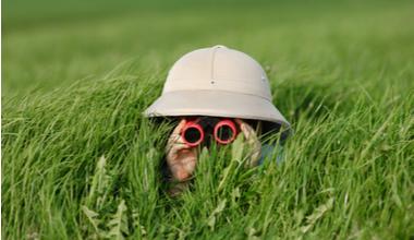 Boy looking with binoculars