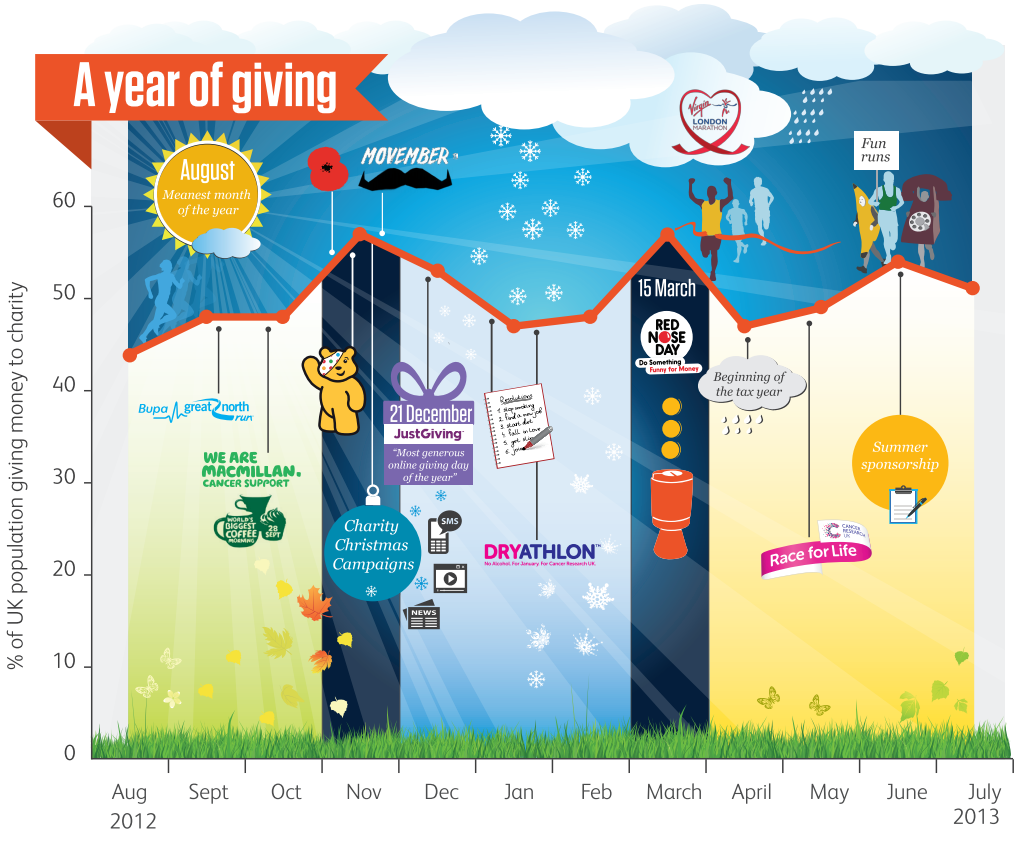 A year of giving 2013 infographic