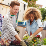 Young man and woman gardening
