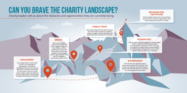 Charity Landscape infographic